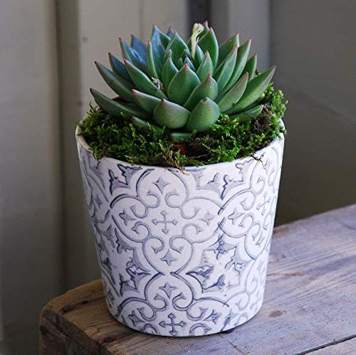 Small grey and white terracotta cache pot with crackle glaze